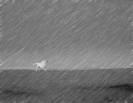 2006 - mưa gió một đời