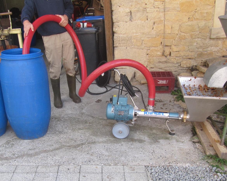 Kernobst wird im Muser zerkleinert und die entstandene Maische für die Gärung in Standen gepumpt.