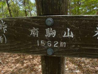 12:30 府駒山