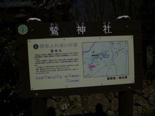 11:23 鷲神社