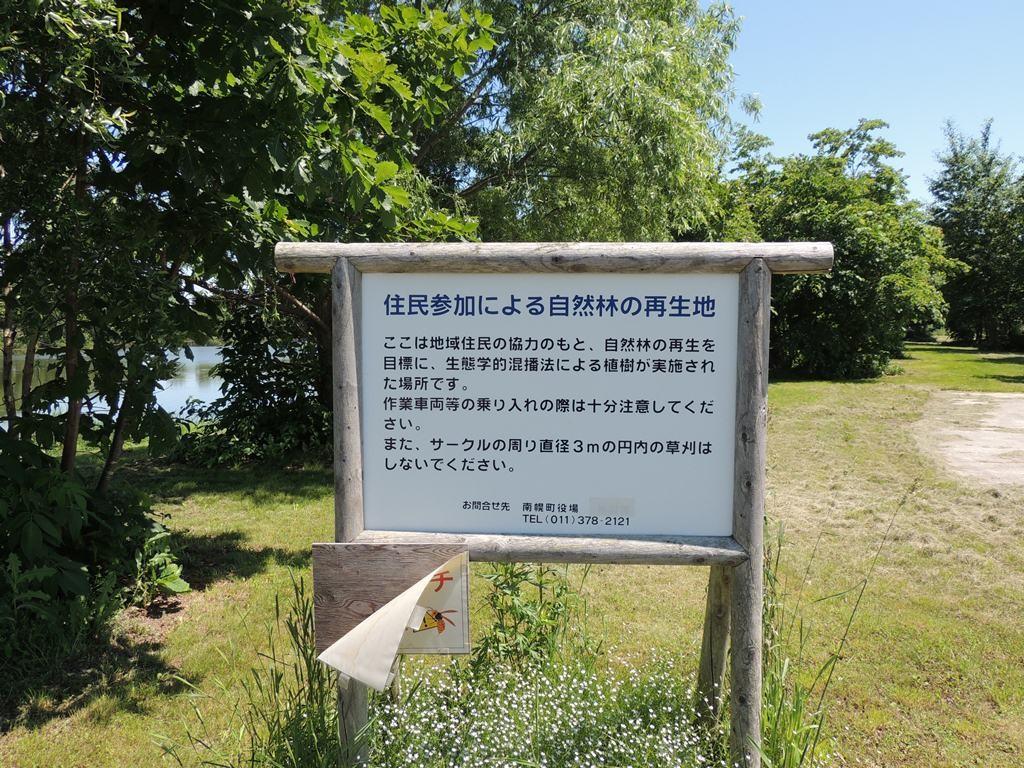 2014.06.22 三重湖公園の樹林地(スズメバチに注意)