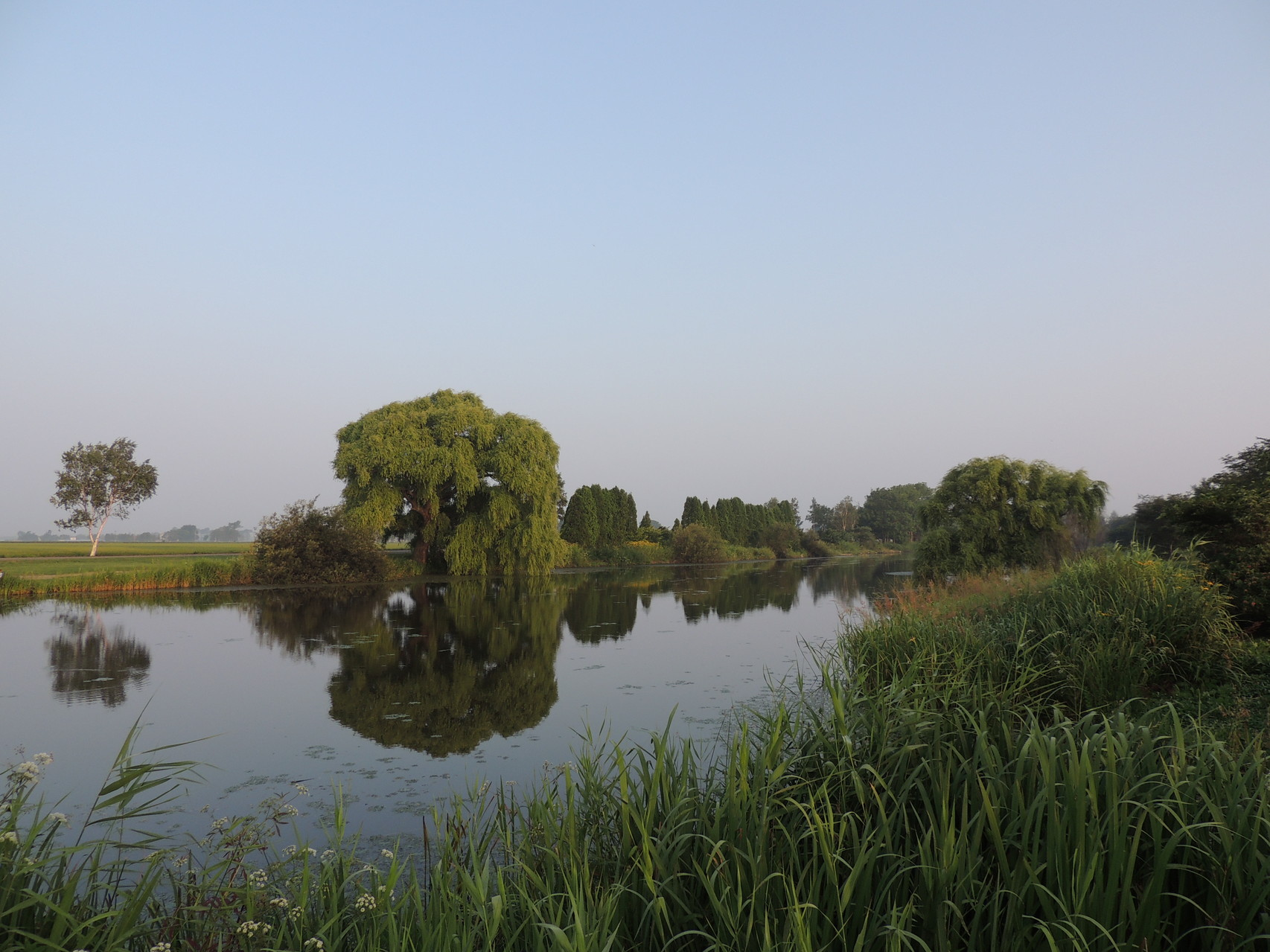 2014.08.01 早朝の三重湖