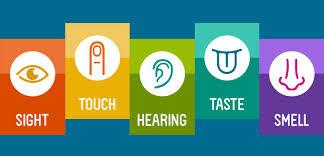 Conversazione Inglese Sensoriale – TOGUV - Benvenuti su ...