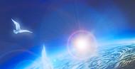 EARTHFRIENDS-Webside