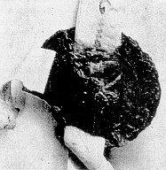 Siegel des Ekehard von Bleichenbach