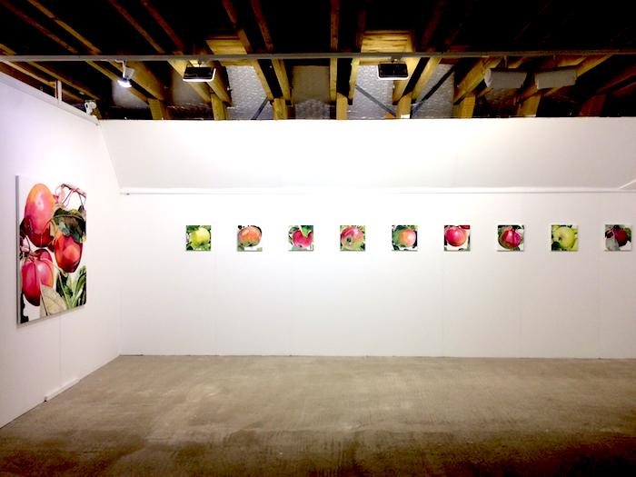 Radiale 2018 - Ausstellungsort: Hirschberg - Arbeiten aus der Werkgruppe 'alte apfelsorten'