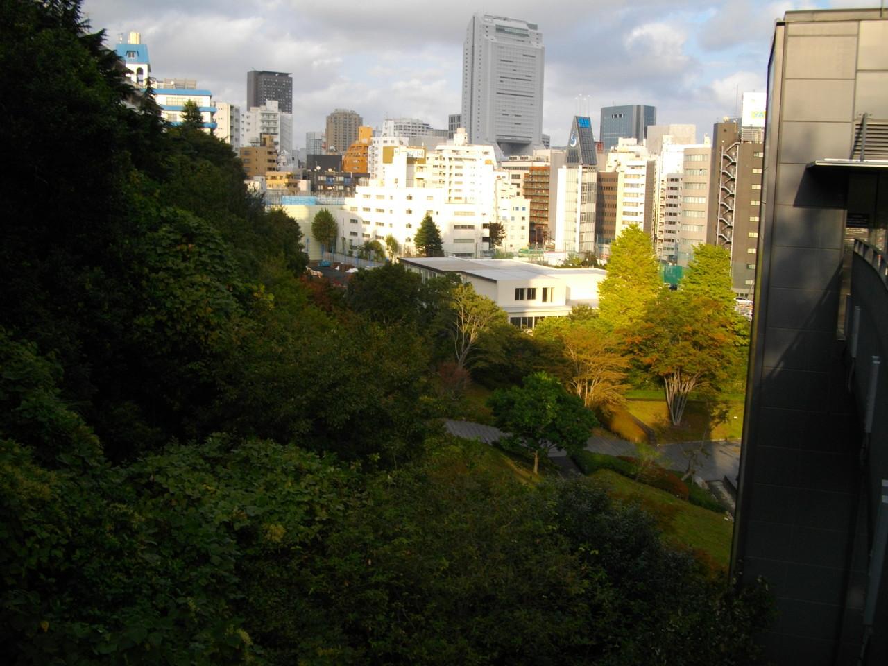 公開空地の高台から田町方面を望んで。東京でもピクニッックができる場所はたくさんありました。