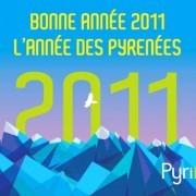 L'année des Pyrénées
