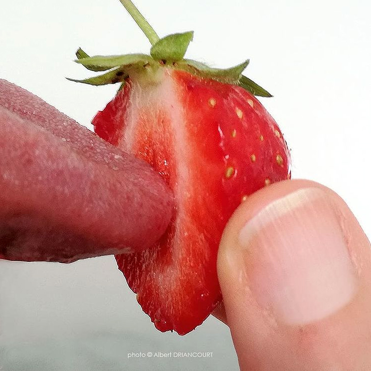 Fraisilingus (sortir du consensuel, bousculer les codes, provoquer des réactions, et manger 5 fruits et légumes)