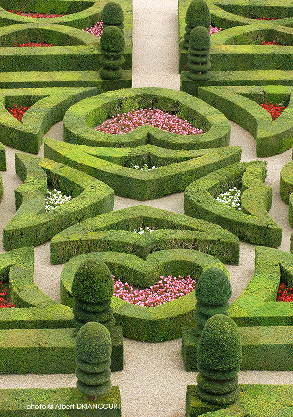 détail dans les jardins du château de Villandry