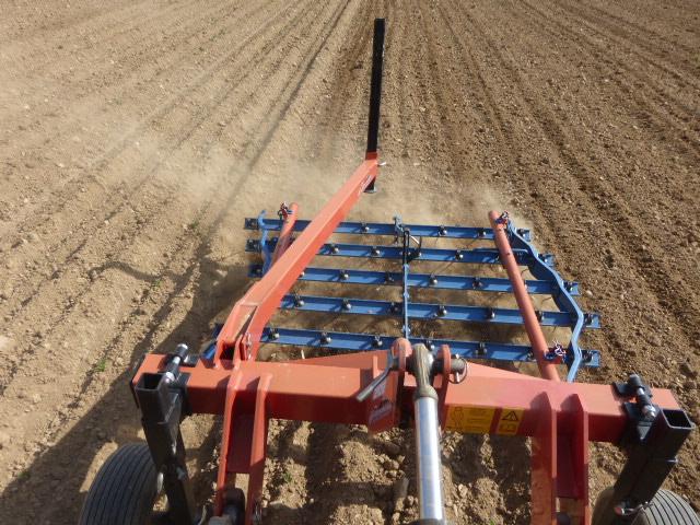 Le passage de la herse étrille est réalisé 15 jours après la plantation, ce qui permet de détruire 80 % des mauvaises herbes comme ici dans les pommes de terre.