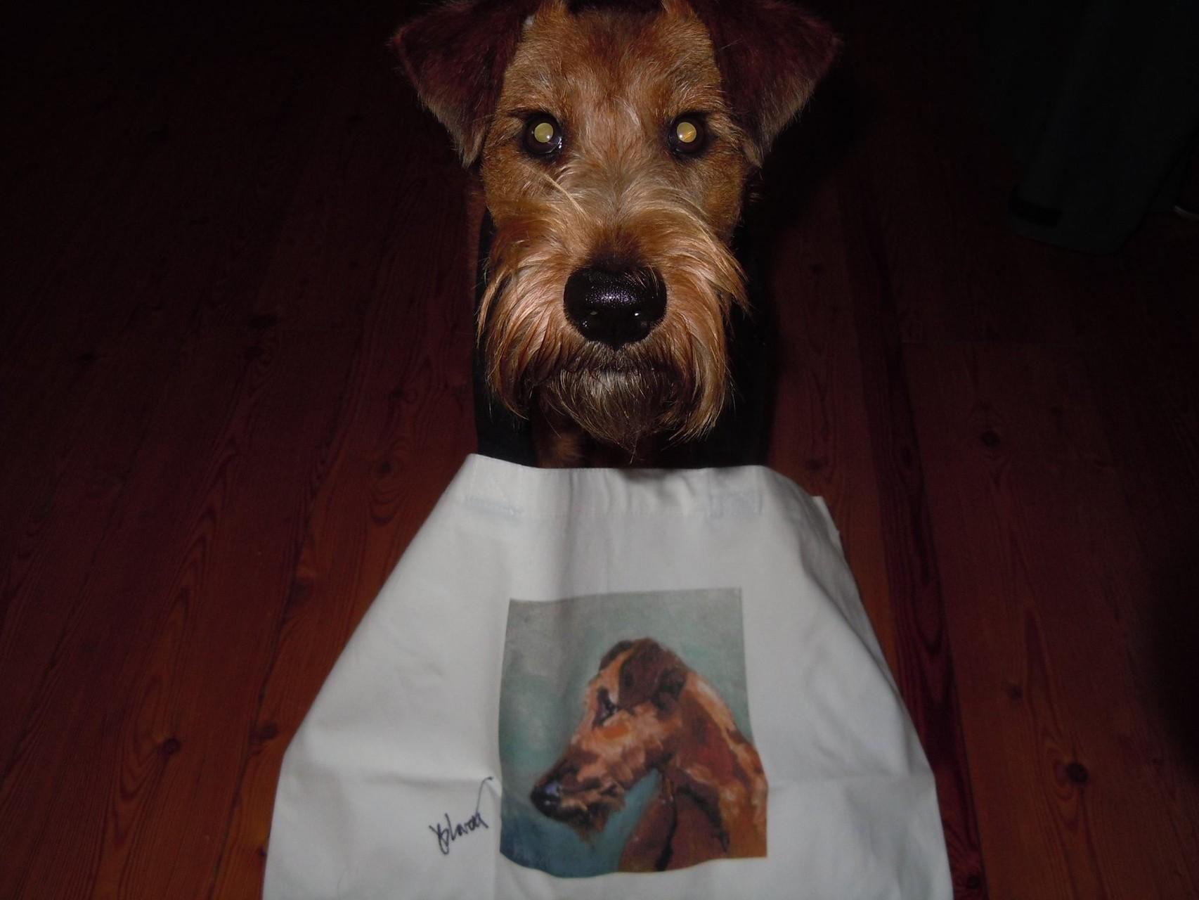Ginger hat nun ihr eigene Tasche.