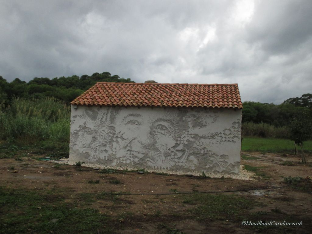 Scratching the surface Porquerolles 2018, Alexandre Farto aka Vhils
