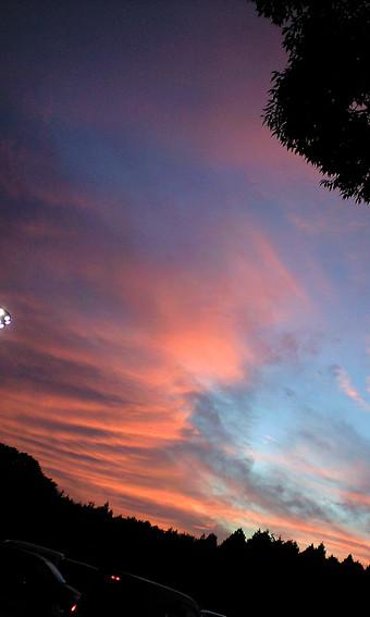 ツーリングの最後、足柄SAで見た夕焼け。凄まじいまでの色づきに、だれかれなくカメラや携帯を向け撮影に没頭していたのが印象的だった