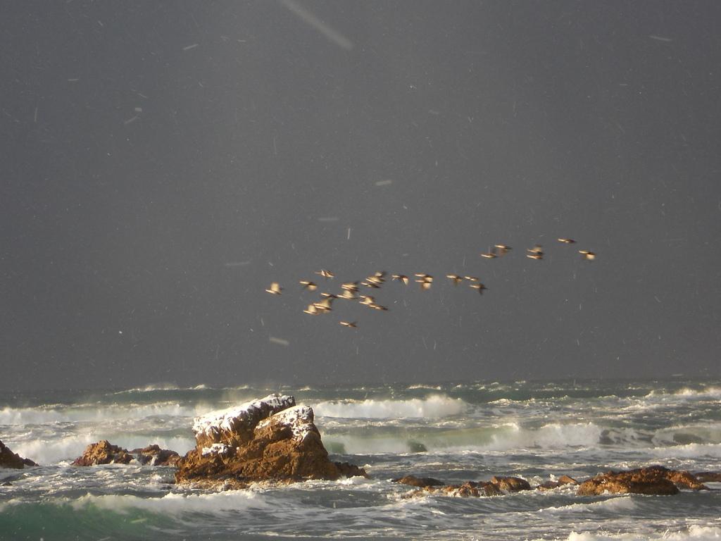 嵐ヶ浜の冬