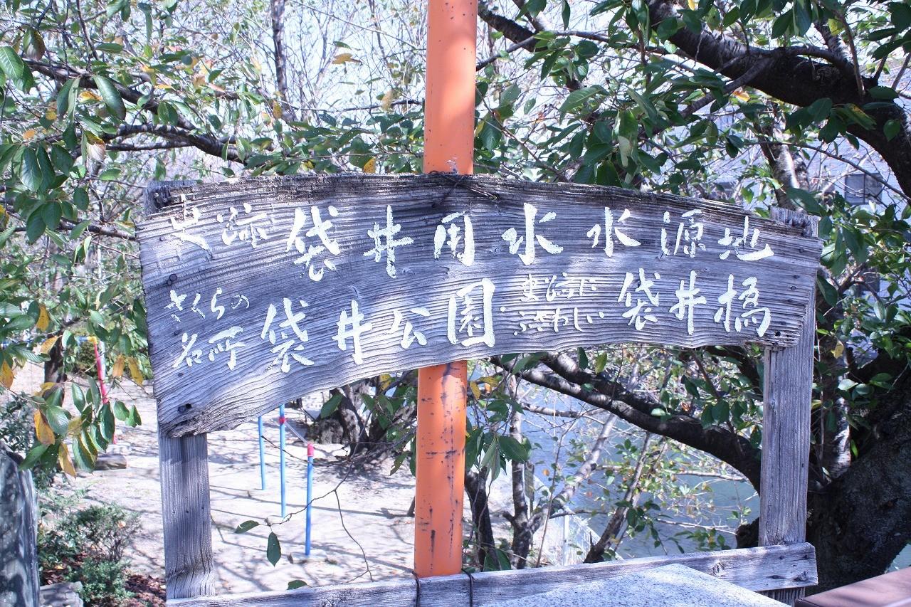 袋井用水水源地にある袋井公園は桜の名所です。
