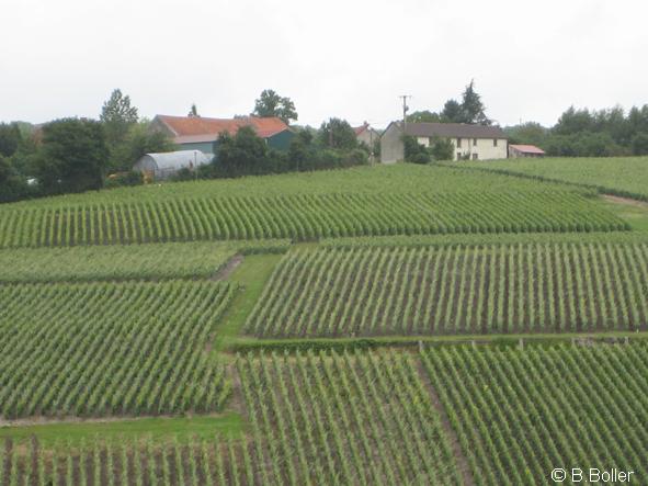 Vue du clocher le hameau de Chézy