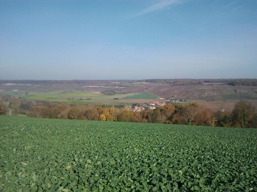 Baulne en Brie, niché dans la vallée du Surmelin