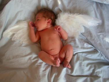 Klein Timon kam am 24. Dezember auf die Welt...
