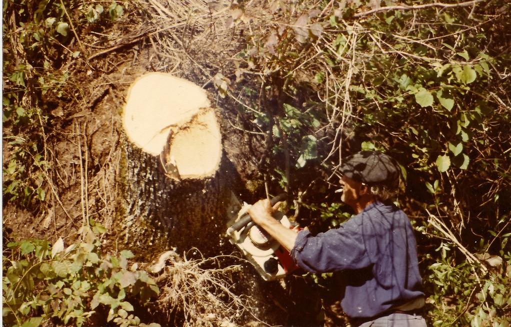 1987 Duval SARLIN tronçonne