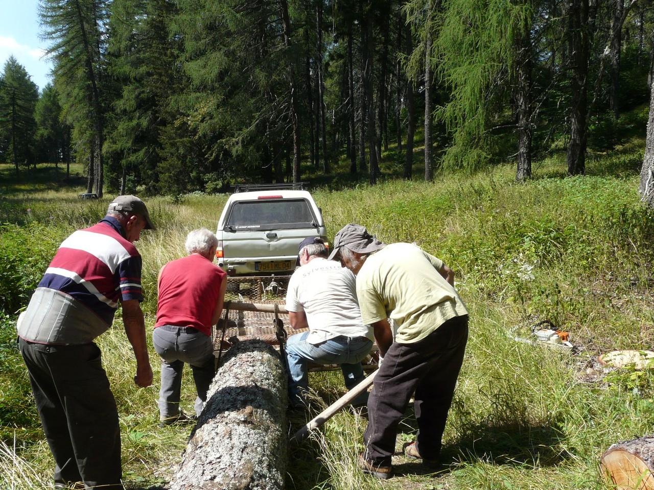 Forêt Esparron 18 auoût 2009