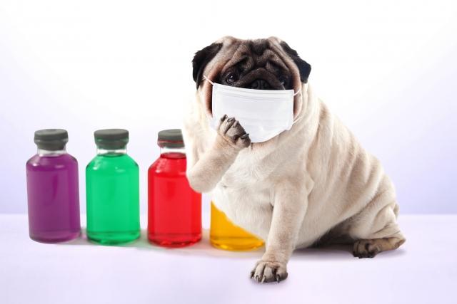 自宅でできる!風邪の予防法(名古屋市天白区の鍼灸院‐大根治療院)