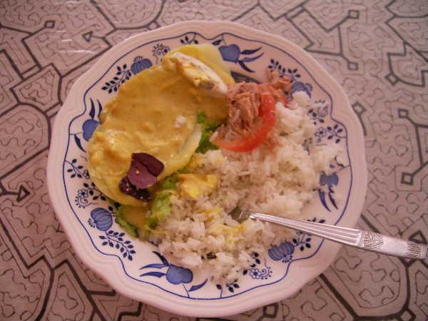 マネノ宅でのある日の昼食。写真とは違いますが、マネノ宅で覚えたメニューに「アヒデガイーナ」という、日本で言う所の雑炊に近い物があります。仮にペルーで体調を崩しても、こういうメニューを知っておくと重宝。