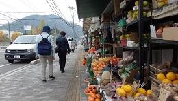 旧街道沿いの果物屋さん。安くて旨そう。三原東町、酔心酒蔵への道すがらにて。