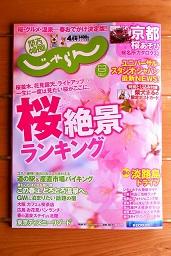表紙はすでに桜が満開