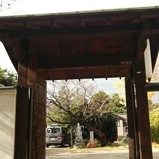浄春寺門 義斎先妻浅川氏柳の墓がある。芭蕉の碑、田能村竹田の墓もある。