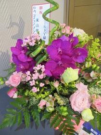 梅庵さんからのお花。