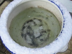 手水鉢にたまっていた水は氷に。