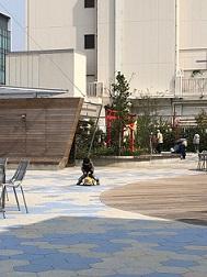 福屋の屋上(広島市)