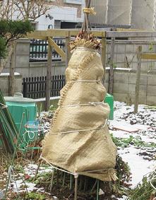 札幌の実家の雪囲い 12・3
