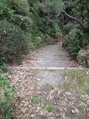 枯れ葉がたまったままの石段
