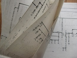 10ペ━ジに及ぶ手書きの家系図
