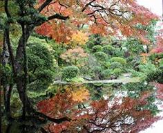 【秋の心田庵】