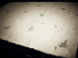 美しい越前和紙のテーブルセンター(越前市役所)2016・6・28