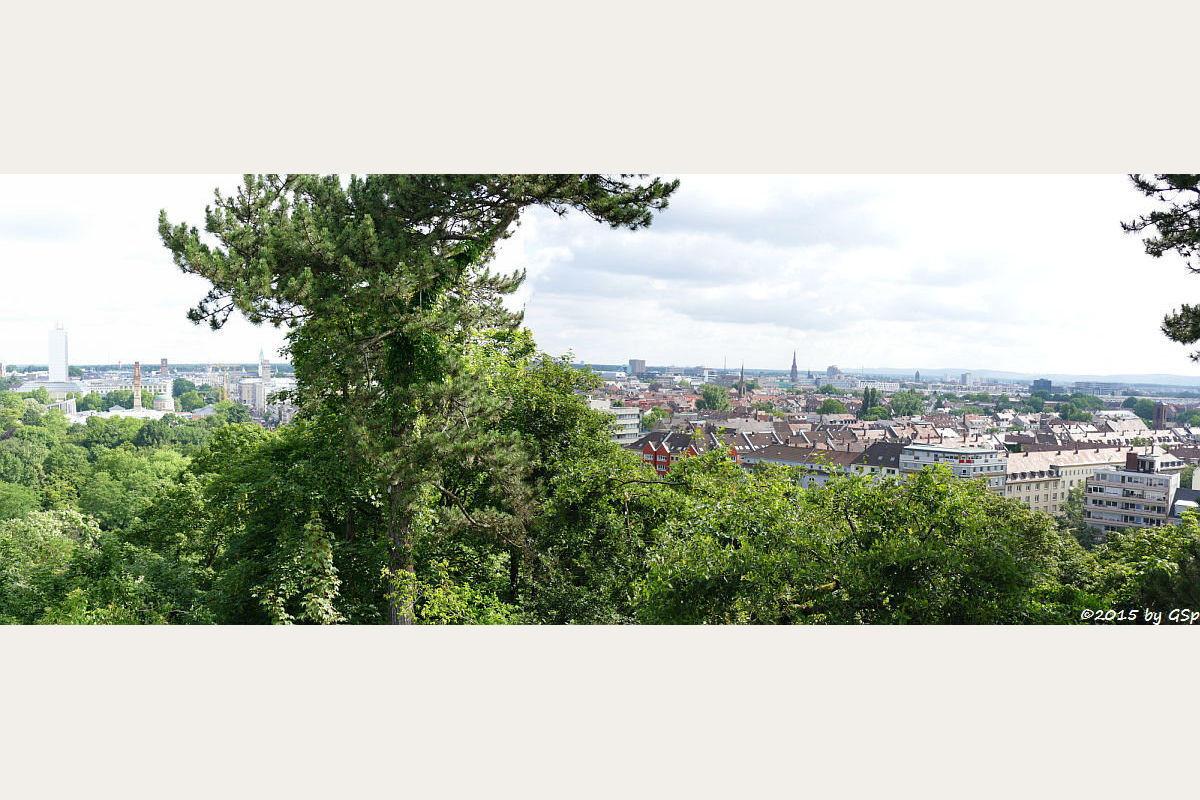 Blick vom Lauterberg-Aussichtspunkt