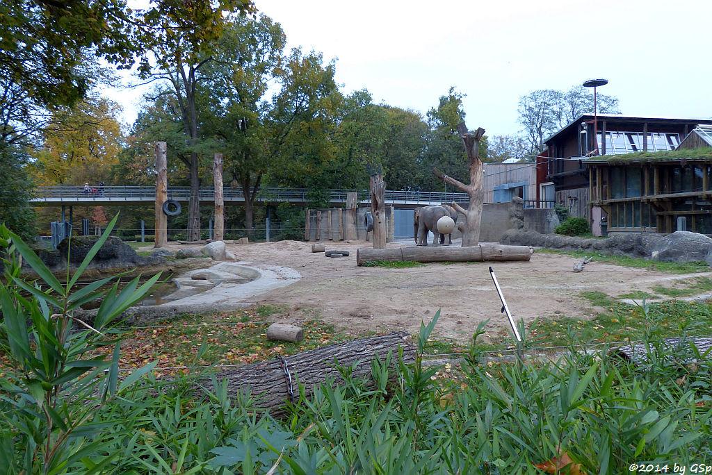 Elefanten-Außenanlage und Dickhäuterhaus