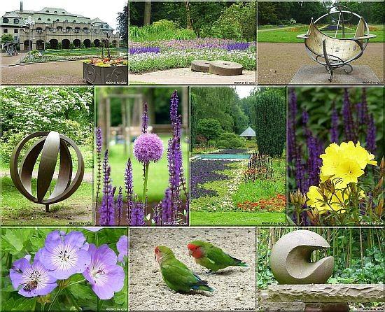 Bunter Garten - 80 Fotzos