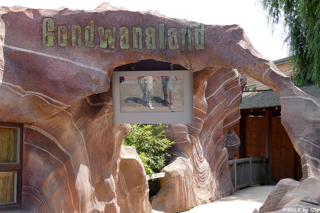 Gondwanaland - 78 Fotos