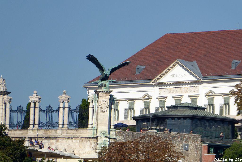 Turul Vogel am Budaer Burgpalast