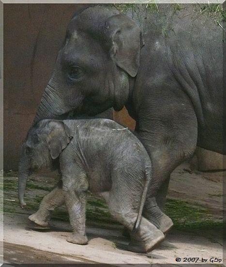 Shila und Kandy