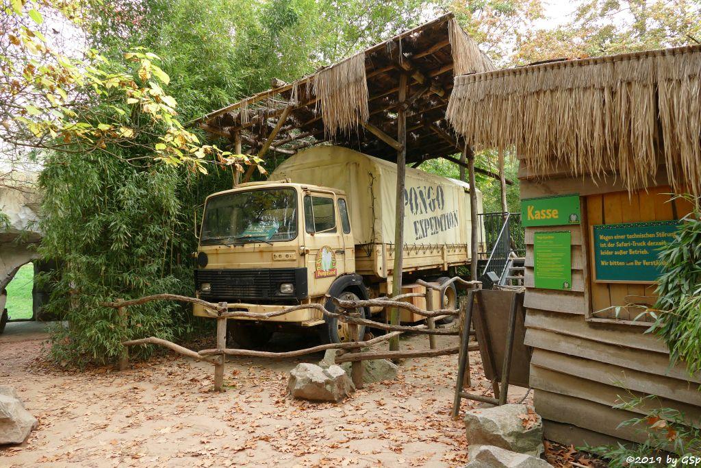 Safari-Truck