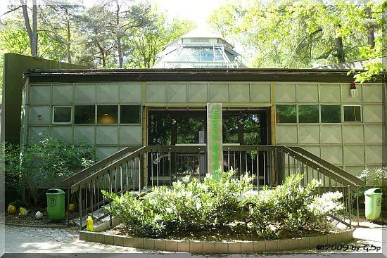 Regenwald-Pavillon