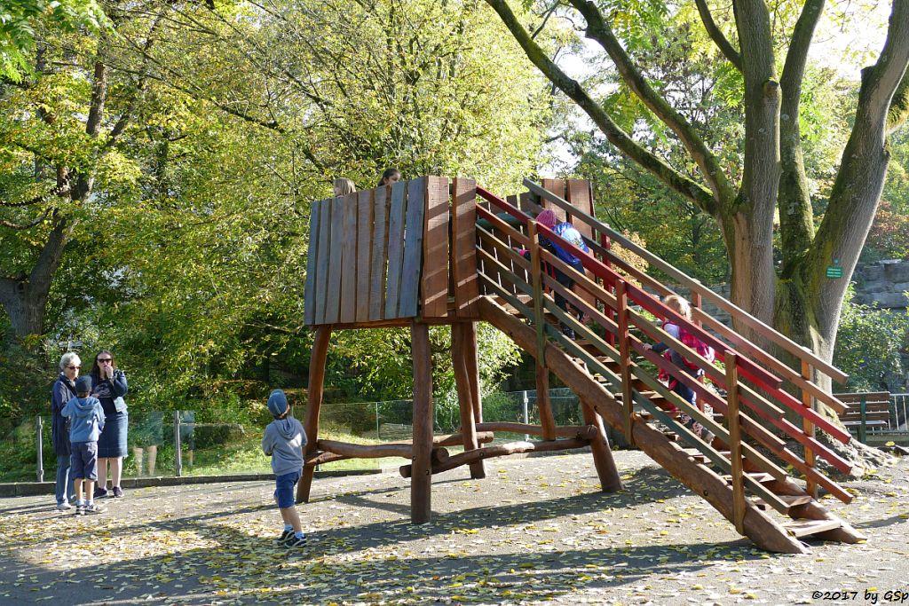 die neue Holz-Aussichtsplattform