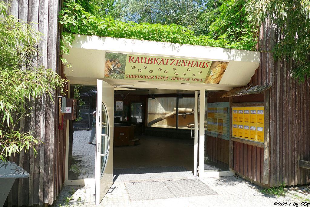 Raubkatzenhaus