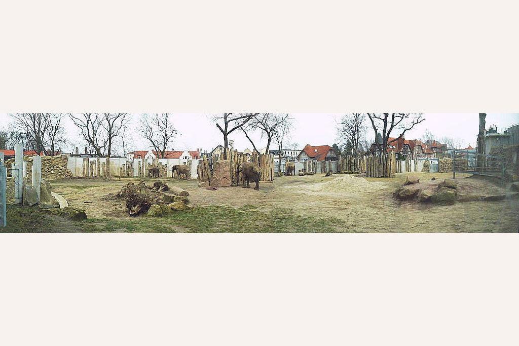 Elefantenanlage - 45 Fotos