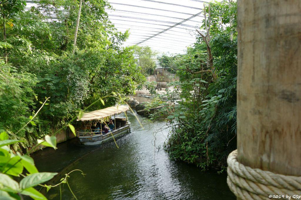 Rimbula River
